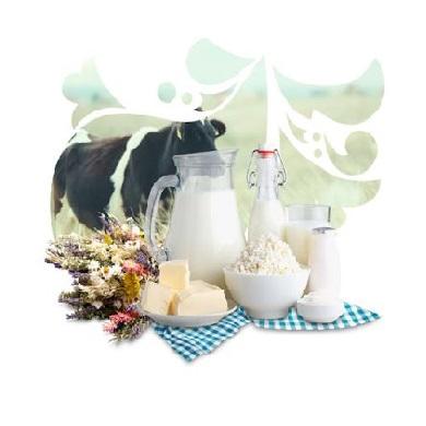 Молоко и продукты из молока