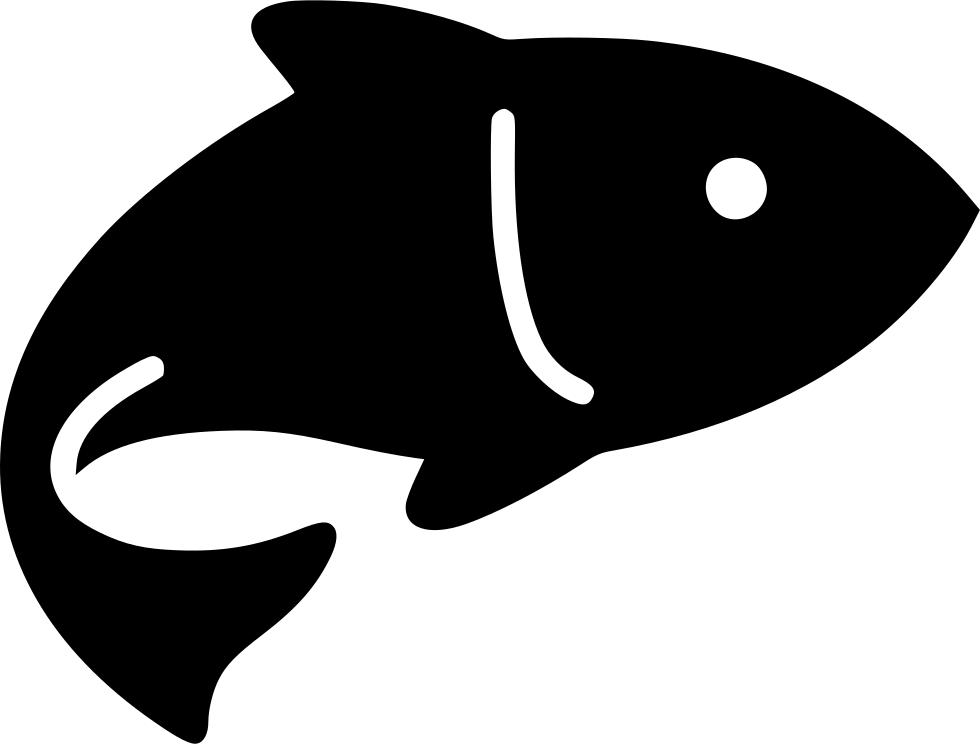 Рыба и продукты из рыбы